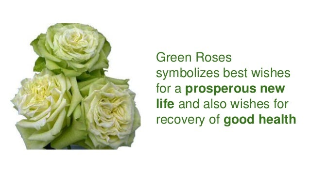Find out different meanings of rose colors for Green colour rose images