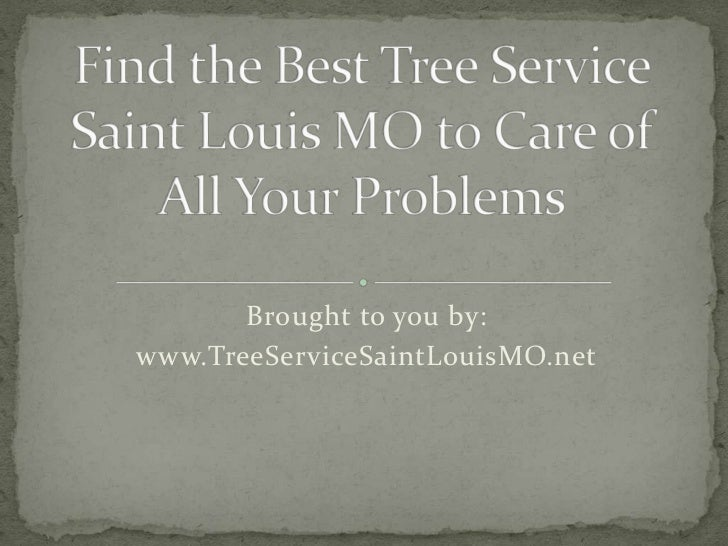 Brought to you by:www.TreeServiceSaintLouisMO.net