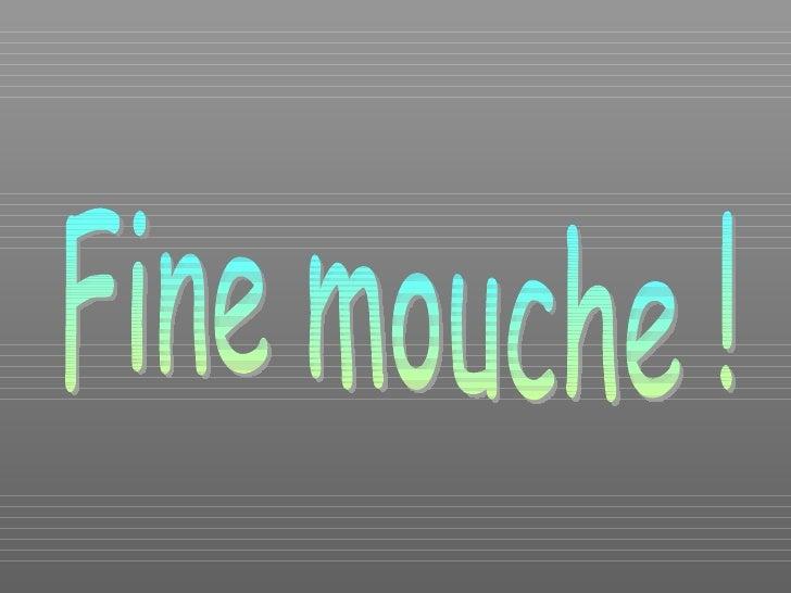 Fine mouche !