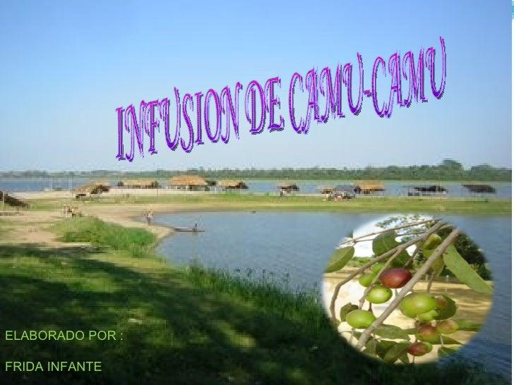 INFUSION DE CAMU-CAMU ELABORADO POR : FRIDA INFANTE