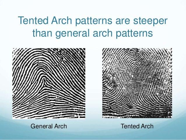 Tented Arch ... & Fingerprint patterns