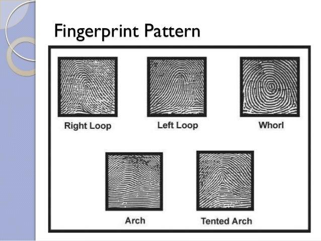 Fingerprints recognition Slide 3
