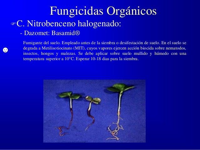 Si es eficaz el tratamiento del hongo de las uñas por el láser