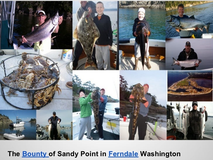 The Bounty of Sandy Point in Ferndale Washington