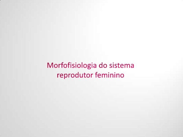 Mutilação                          Genital Feminina  Diferenciação                                              Estrutura ...