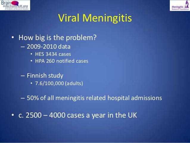 viral meningitis a real pain in the neck by dr fiona mcgill