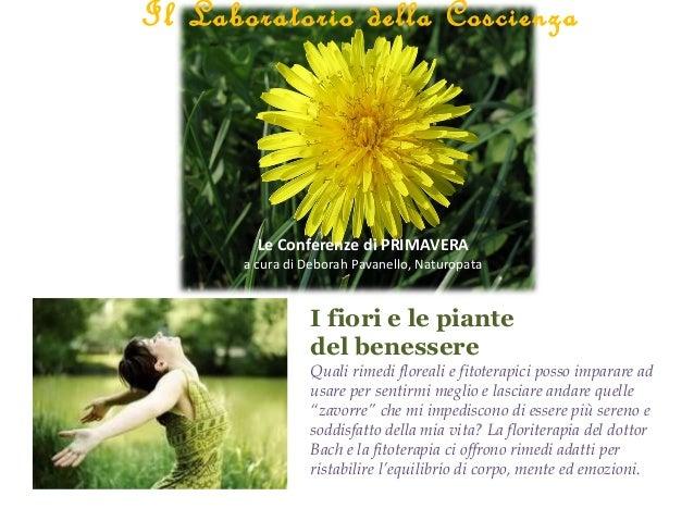 I fiori e le piantedel benessereQuali rimedi floreali e fitoterapici posso imparare adusare per sentirmi meglio e lasciare...