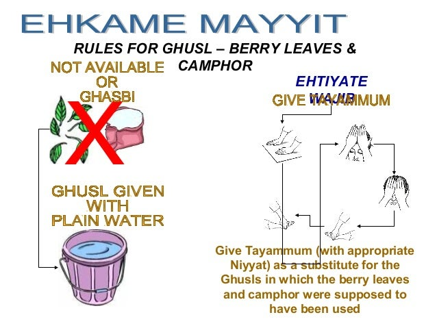 RULES FOR GHUSL – BERRY LEAVES & CAMPHOR EHTIYATE WAJIB Give Tayammum (with appropriate Niyyat) as a substitute for the Gh...
