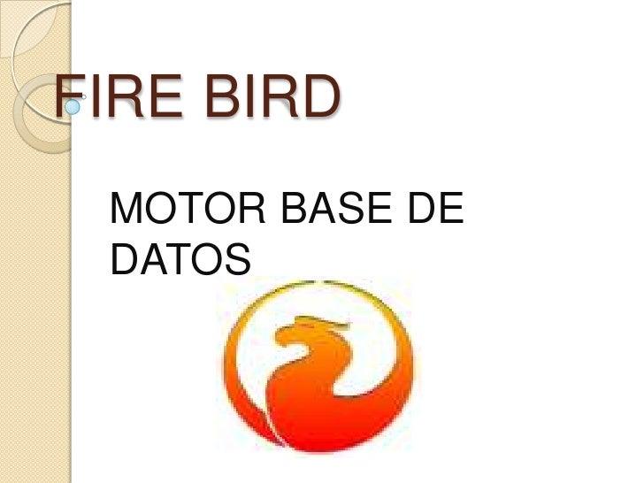 FIRE BIRD  MOTOR BASE DE  DATOS