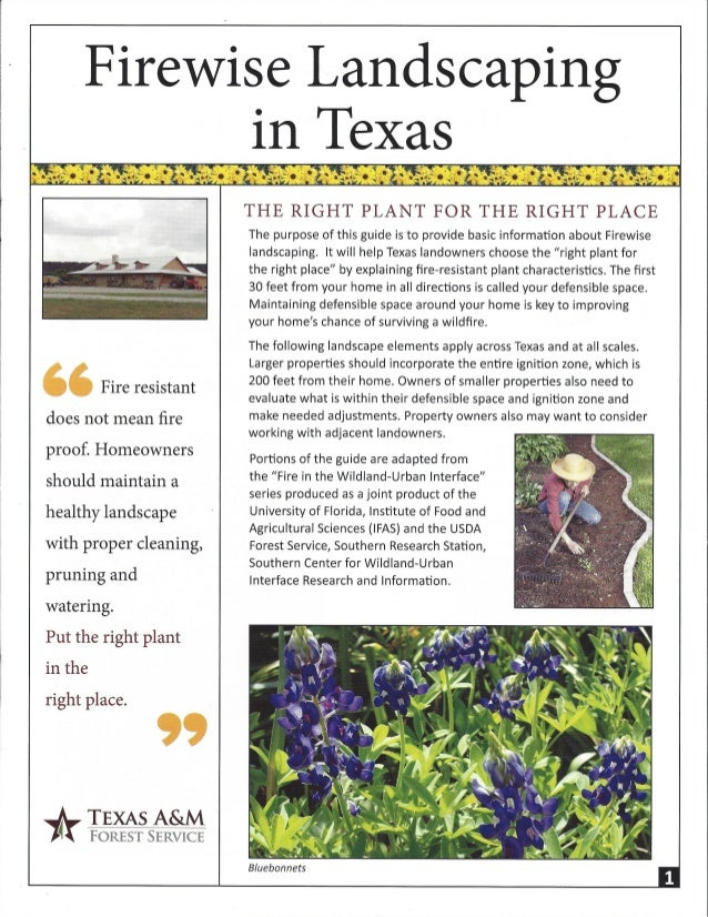 Firewise Landscaping in Texas