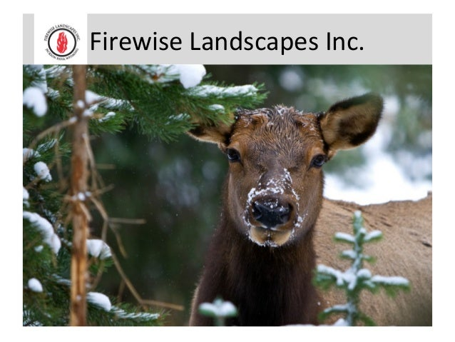 Firewise Landscapes Inc.