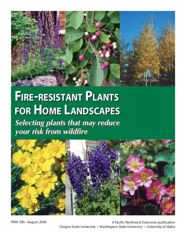 FIRE-RESISTANT PLANTS FOR HOME LANDSCAPES PNW 590 • August 2006 Selecting plants that may reduce your risk from wildfire FI...