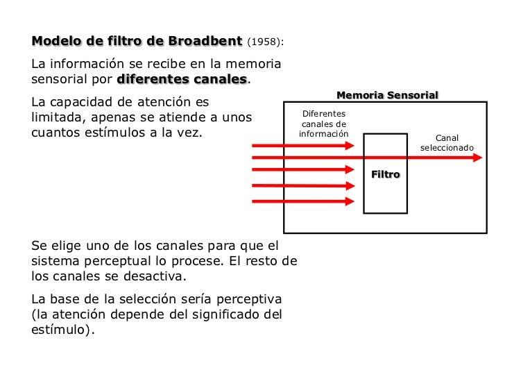 Modelo de filtro de Broadbent(1958):<br />La información se recibe en la memoria sensorial por diferentes canales.<br />La...