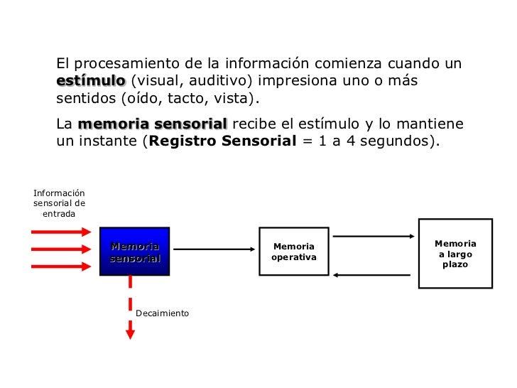 El procesamiento de la información comienza cuando un estímulo (visual, auditivo) impresiona uno o más sentidos (oído, tac...