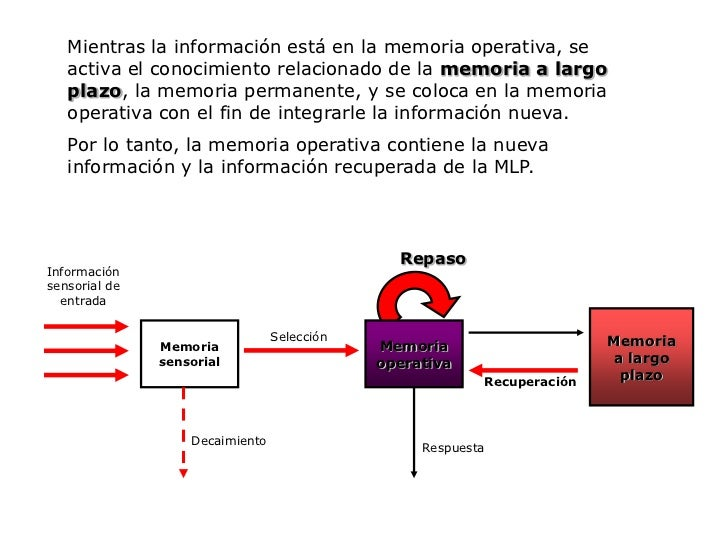 Formato codificado: La información se estructura mediante procesos diversos de codificación, ya sea verbales, visuales o s...