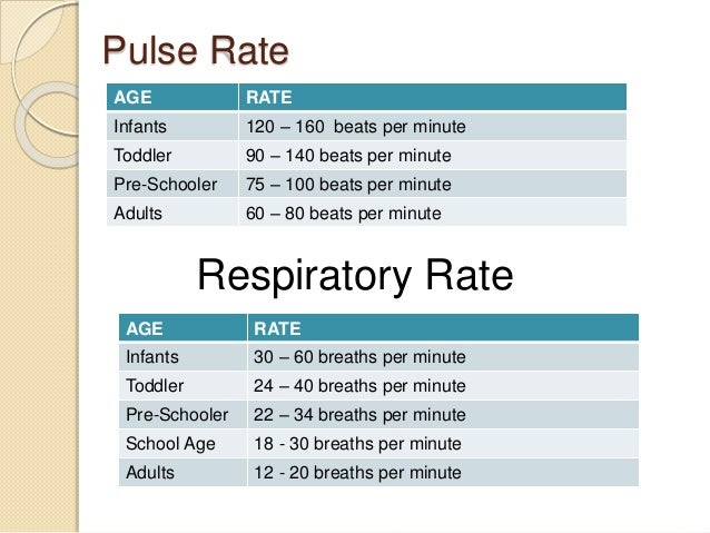 adult breathing rates