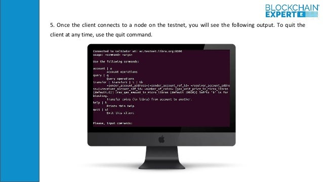5. Once the client connects to a node on the testnet, you will see the following output. To quit the client at any time, u...
