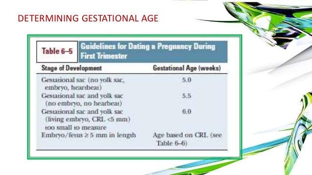 first trimester ultrasound dating