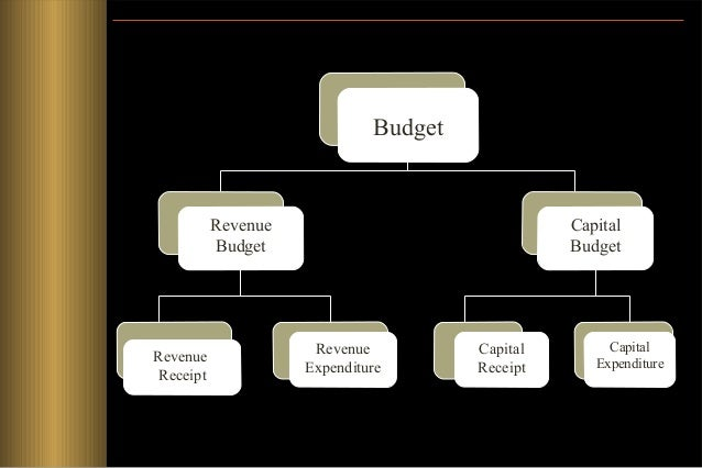 ACTIVITIES OF THE STATE   Collection of Revenues  Spending of Revenues