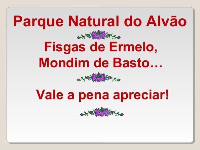 Fisgas de Ermelo, Mondim de Basto… Vale a pena apreciar! Parque Natural do Alvão