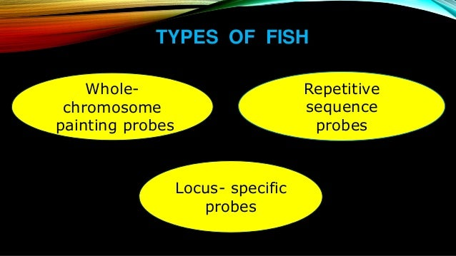 Fluorescence in situ hybridization fish for Fish fluorescent in situ hybridization