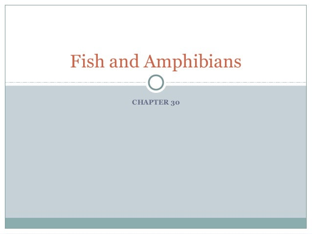 Fish and Amphibians      CHAPTER 30