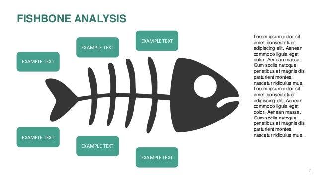 Fish bone analysis slides