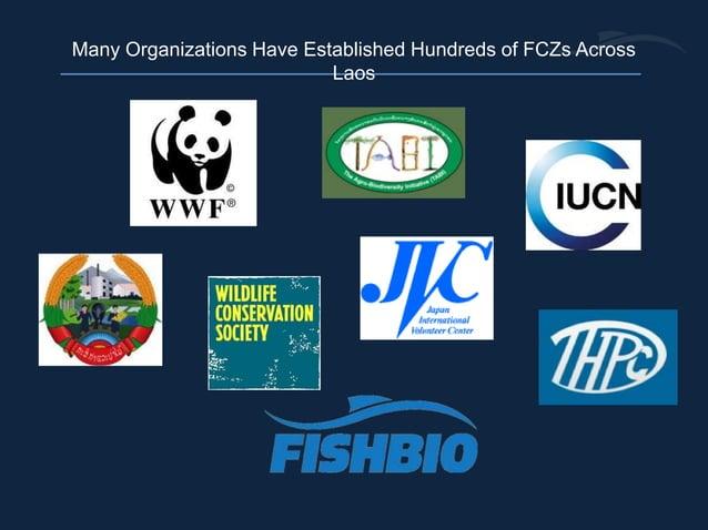 Many Organizations Have Established Hundreds of FCZs Across Laos