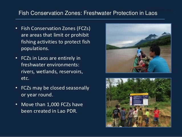 • Fish Conservation Zones (FCZs) are areas that limit or prohibit fishing activities to protect fish populations. • FCZs i...