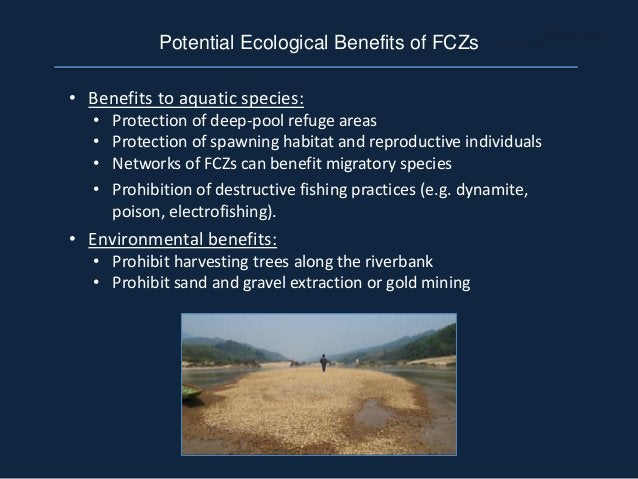 • Benefits to aquatic species: • Protection of deep-pool refuge areas • Protection of spawning habitat and reproductive in...