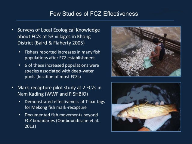 Few Studies of FCZ Effectiveness • Surveys of Local Ecological Knowledge about FCZs at 53 villages in Khong District (Bair...