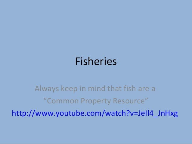 "Fisheries Always keep in mind that fish are a ""Common Property Resource"" http://www.youtube.com/watch?v=JeIl4_JnHxg"