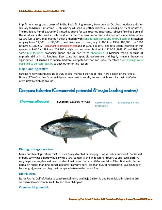 Marine commercial fin fish and shell finsh fisheries of india commercial potential global capture production for sardinella longiceps fao fishery statistic 10 publicscrutiny Gallery