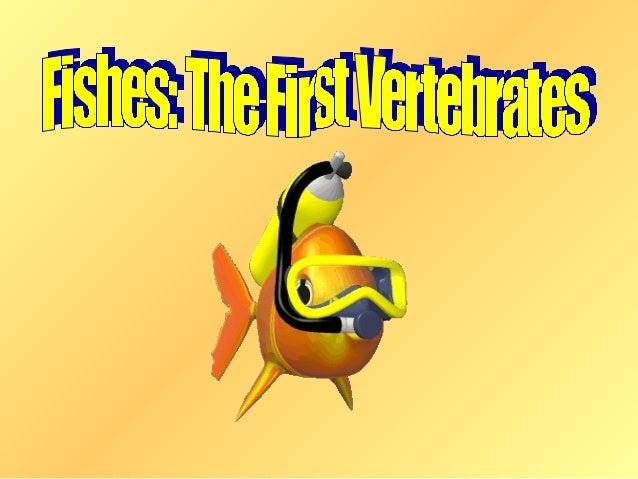 • Animals that have a   Chordates  backbone are called  vertebrates.• Vertebrates belong  to phylum chordata  (called chor...