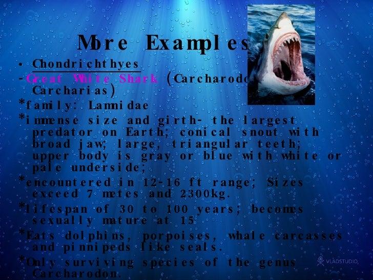 Biologi perikanan pdf free