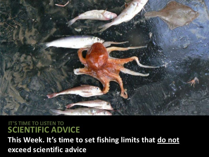 IT'S TIME TO LISTEN TOSCIENTIFIC ADVICEThis Week. It's time to set fishing limits that do notexceed scientific advice