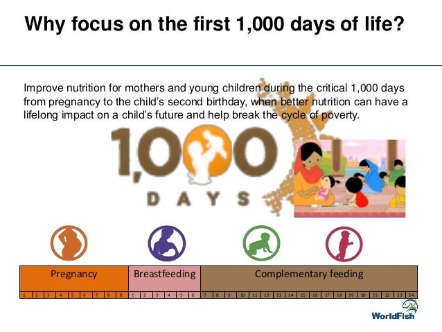Fish-based products to improve nutrition in the first 1,000 days of l ...