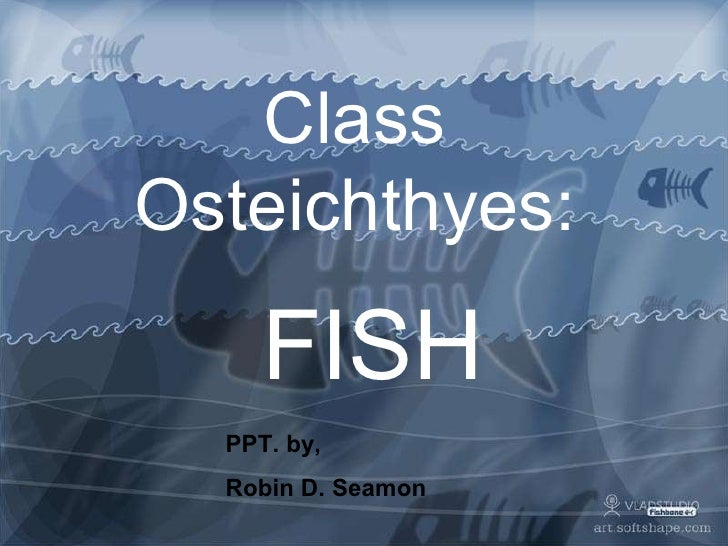 Class Osteichthyes: FISH PPT. by,  Robin D. Seamon