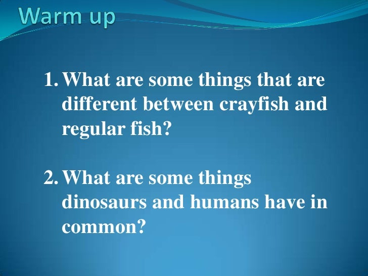 Warm up<br />What are some things that are different between crayfish and regular fish?<br />What are some things dinosaur...