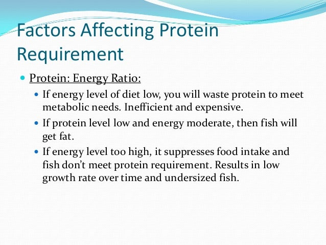 Fish nutrition for Protein in fish