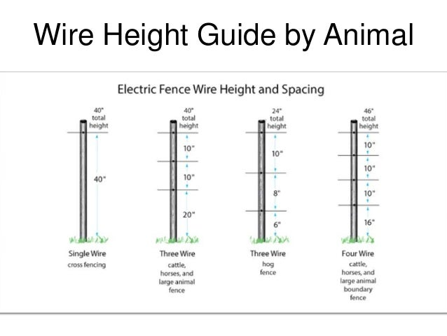Electric Fence Buying Guide. Animal Containment Systems 2 Wire. Wiring. Wire Diagram For Electric Fence For Cattle At Scoala.co