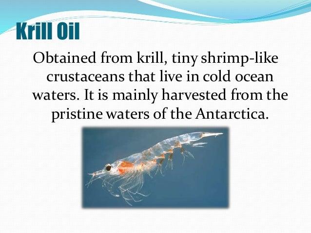 Fish oil vs krill oil for Salmon oil vs fish oil