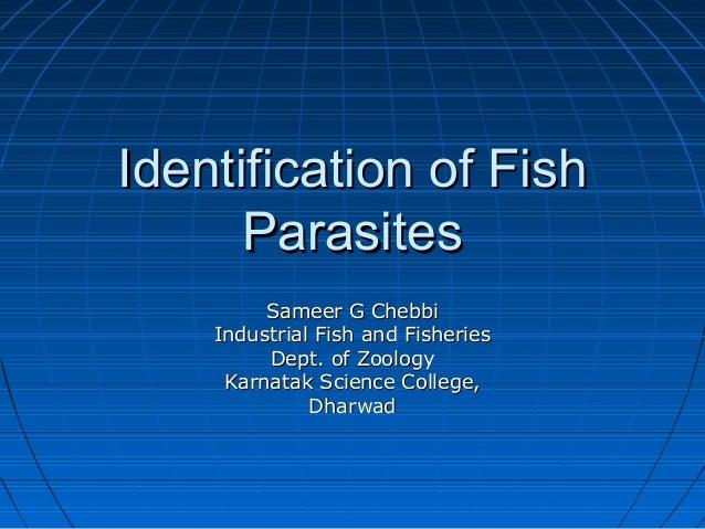 fish parasite