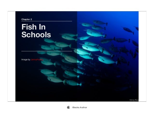 Chapter 2 Fish In Schools Image by JennyHuang.  iBooks Author