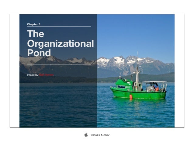 Chapter 3 The Organizational Pond Image by Alan Vernon.  iBooks Author