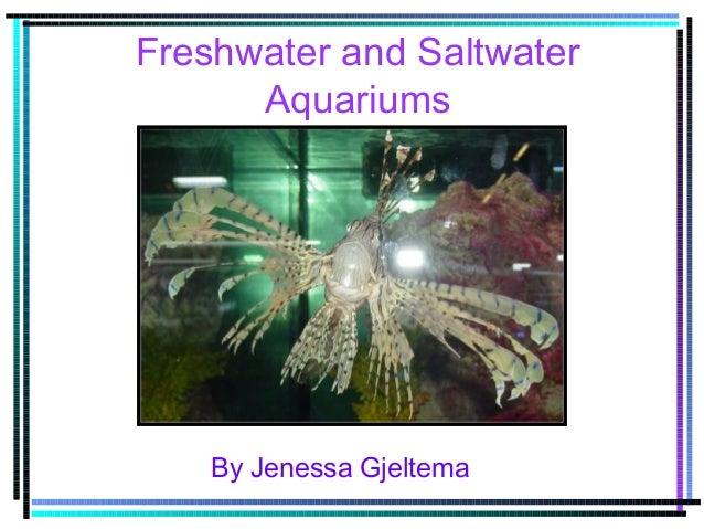 Freshwater and Saltwater Aquariums By Jenessa Gjeltema