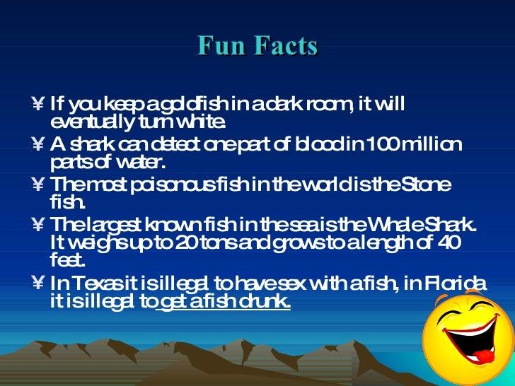Fish 10 2 kiril siyana for Fun fish facts