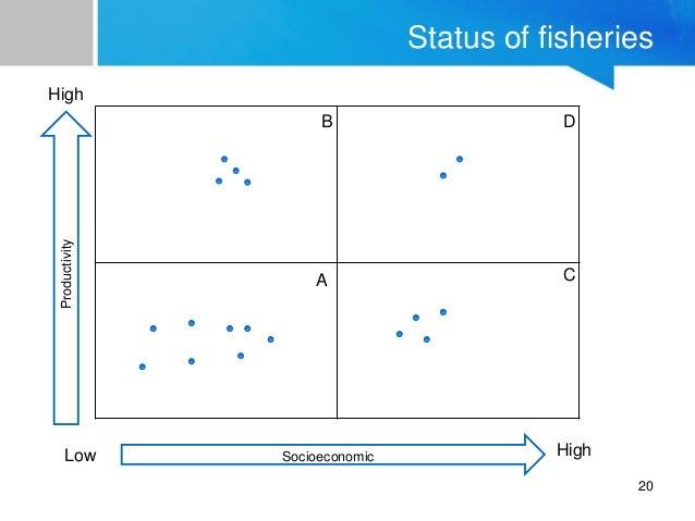 Fish Value Chain 2