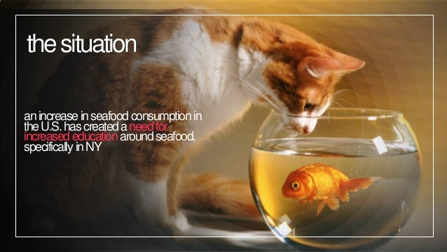 MediaThon 2: Fish World Problems Project Slide 2
