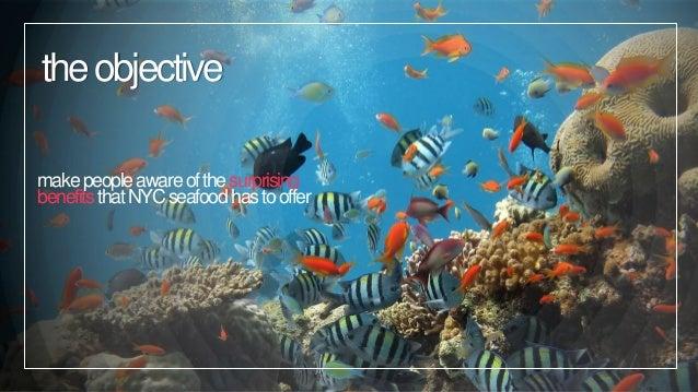 MediaThon 2: Fish World Problems Project Slide 3